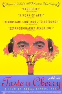 Taste of Cherry (1997)